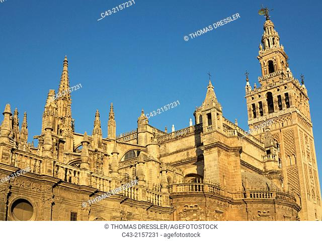 The Moorish Giralda (1184-96) next to the Gothic Cathedral (1402-1506). Seville, Seville province, Andalusia, Spain