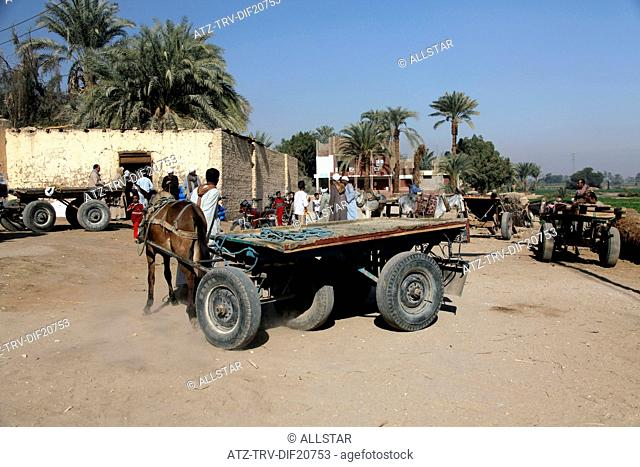 VILLAGE PEOPLE WITH DONKEY & CART; VILLAGE, NEAR LUXOR, EGYPT; 14/01/2013