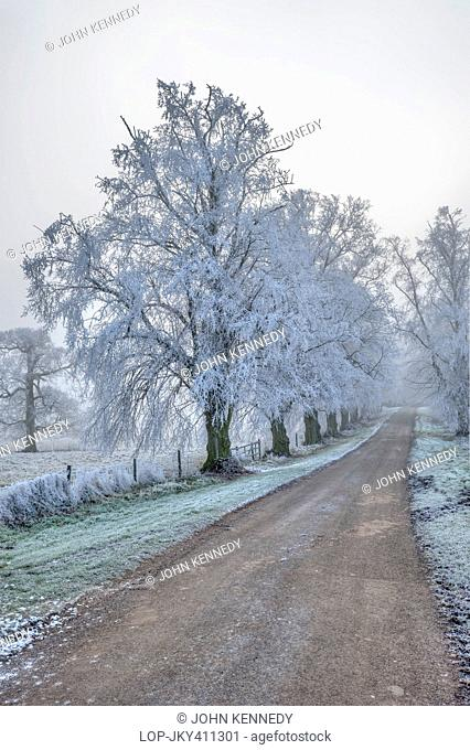 England, Leicestershire, Market Harborough. A heavy hoar frost encases everything along a country lane at Nevill Holt in Leicestershire