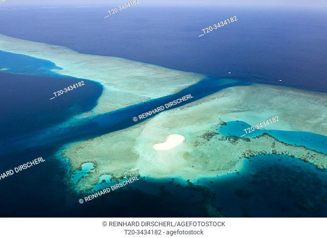 Diving Spot Fotteyo Channel, Felidhu Atoll, Indian Ocean, Maldives