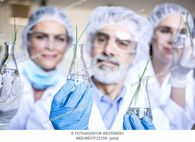 Scientists in lab holding beakers with plant seedlings