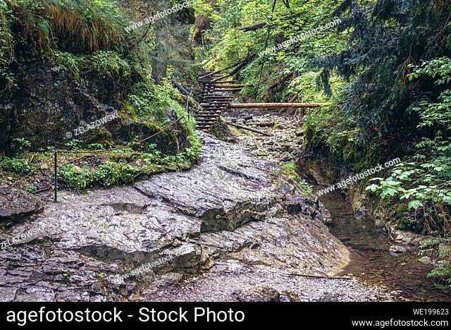 The beginning of famous trail in Sucha Bela canyon in Slovak Paradise National Park, north part of Slovak Ore Mountains in Slovakia