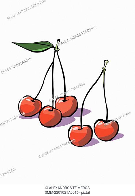 Cherries on their stems