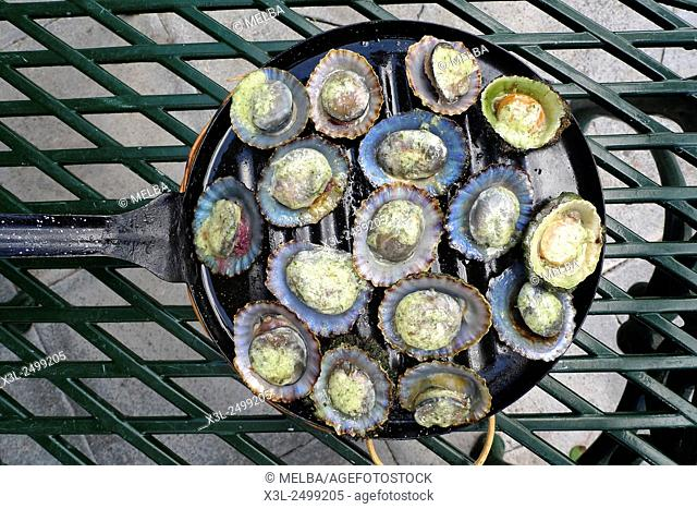 Grilled limpets with green mojo, Lanzarote. Canary Islands. Spain