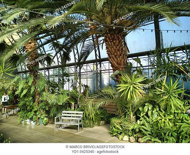 St. Petersburg Russia. The Orangery greenhouse