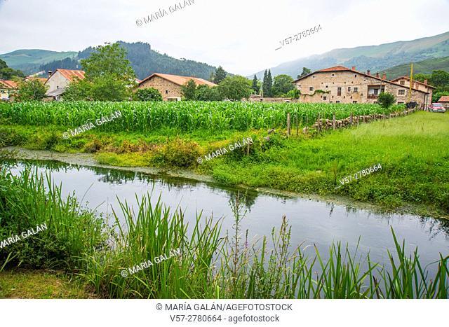 Landscape. Ruente, Cantabria, Spain