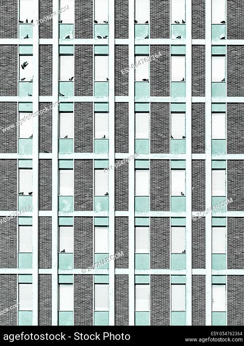 Facade of an abandoned building invaded by pigeons