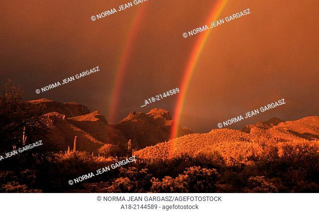 A double rainbow highlights the Bear Canyon area in the Santa Catalina Mountains, Coronado National Forest, Sonoran Desert, Tucson, Arizona, USA