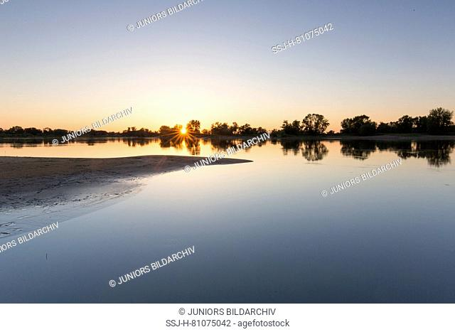 Evening at river Elbe at Lower Saxonian Elbe Valley, biosphere reserve. Lower Saxony, Germany