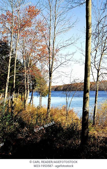 A bright, late-autumn day has left a few fall colors behind at Lake Nockamixon, Pennsylvania, USA