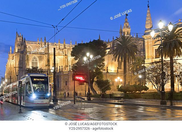 Avenue of the Constitution - Cathedral and Metrocentro tram, Seville, Region of Andalusia, Spain, Europe
