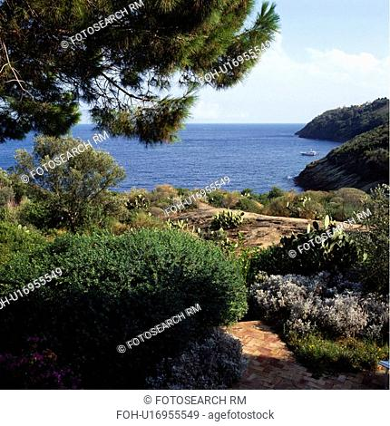 Shrubs and pine trees in coastal garding overlooking the sea