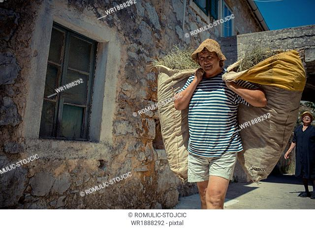 Lavender farmer carrying jute sacks with lavender, Hvar, Dalmatia, Croatia