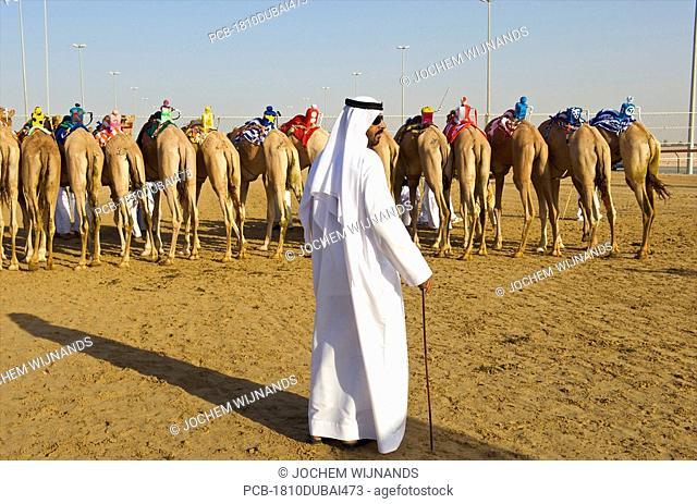 Dubai, Camel racing