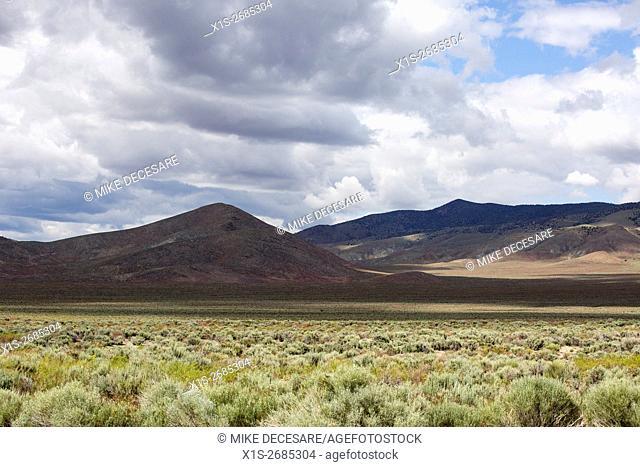 Clouds darken a Nevada desert landscape where a sea of sage brush and other desert floral might soon benefit from rain in a passing storm