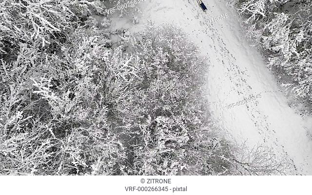 Crane shot of person with sleigh walking amidst snow covered forest