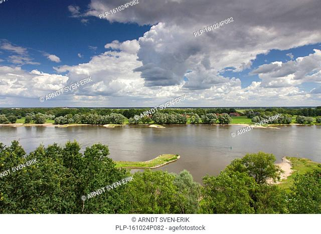 UNESCO Elbe River Landscape biosphere reserve in summer, Lower Saxony, Germany