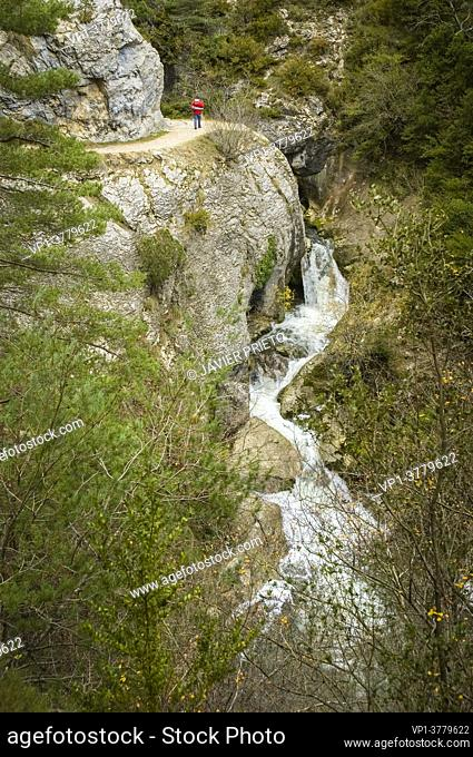 A hiker wearing a red anorak walks along the narrow path that runs alongside the Purón river through the Purón gorge, that connects the provinces of Burgos and...