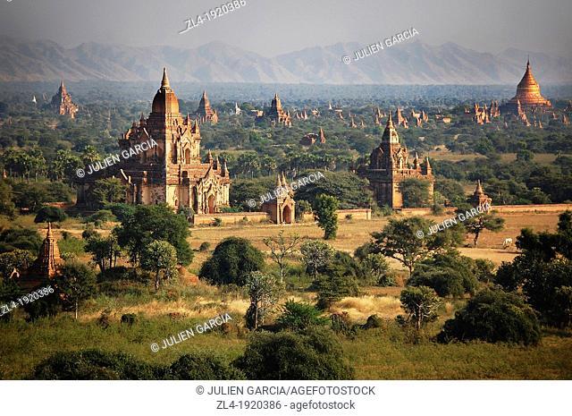 View of Bagan from Shwesandaw pagoda. Myanmar, Ayeyarwady, Bagan. (/Julien Garcia)