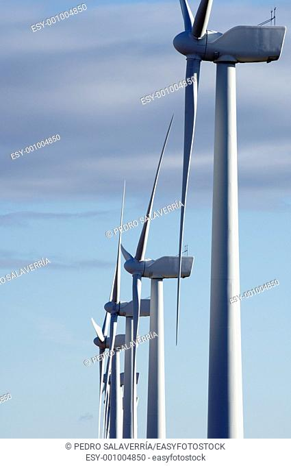 lined mills for production of electric power with cloudy sky, Pozuelo de Aragon, Saragossa province, Aragon, Spain
