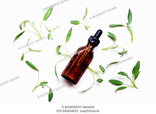 Natural sage essential oil with sage leaves on white background