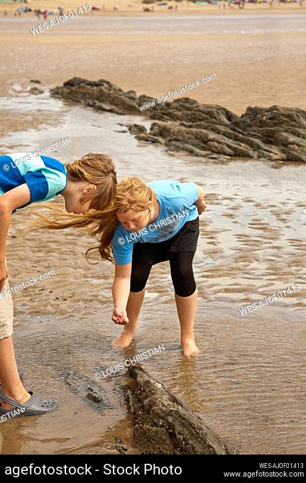 Curious friends playing at beach