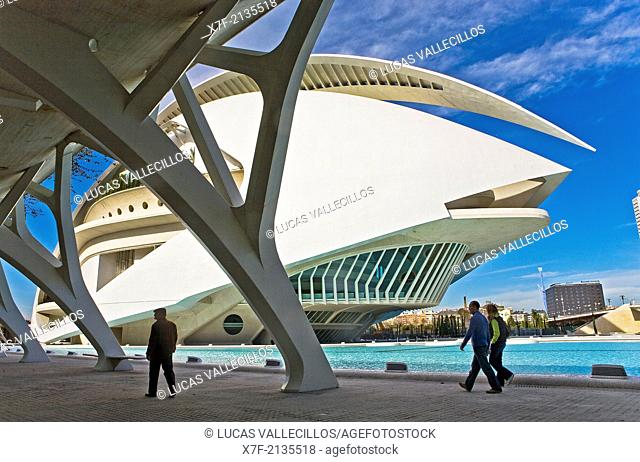 Palacio de las Artes Reina Sofía, City of Arts and Sciences by S. Calatrava. Valencia. Spain