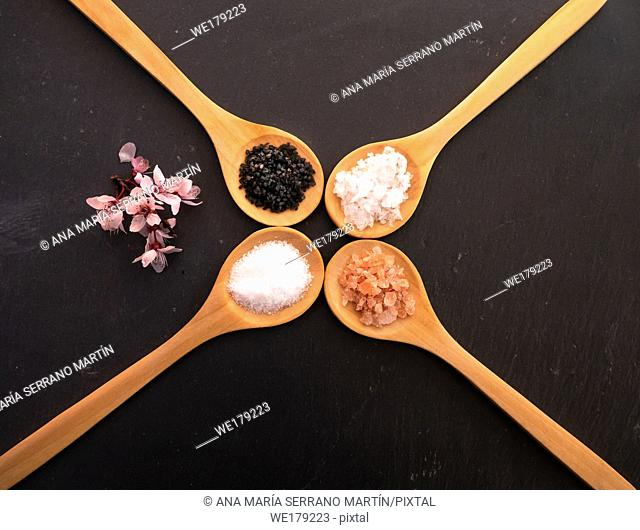 Wooden spoons with himalayan salt, black hawaii salt, common salt and salt flakes on a slate plate