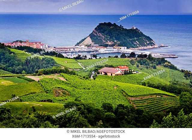 Village view and txakoli crop on mountain hills  Getaria, Guipuzkoa  Basque Country, Spain
