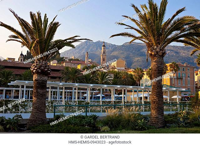 France, Alpes Maritimes, Menton, the old city surrounded by St Michel Basilica