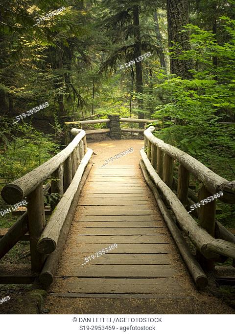 McKenzie River Oregon. USA