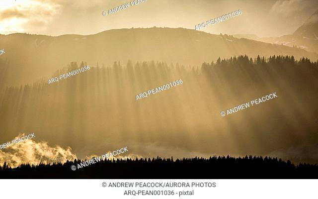 Scenic landscape with sunbeams shining over silhouette of forest at sunset in†Glacier Bay National Park, Alaska, USA