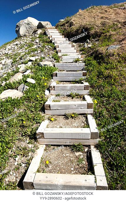 Wooden stairs at Green Point, Gros Morne National Park, Newfoundland, Canada