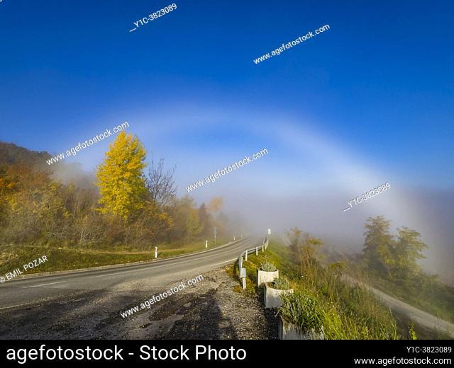Arched fog-bow optical phenomena above empty road near Motovun in Istria Croatia Europe