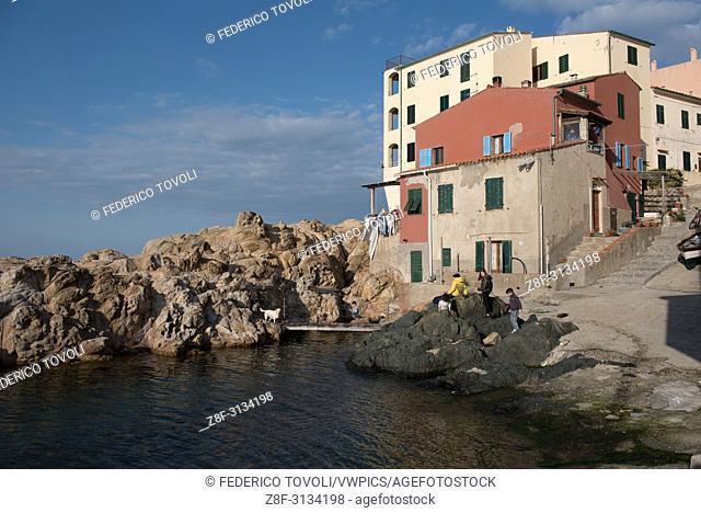 Marciana Marina. Cotone area