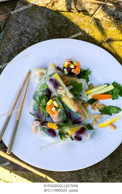 Colourful summer rolls with vegetables (Asia)