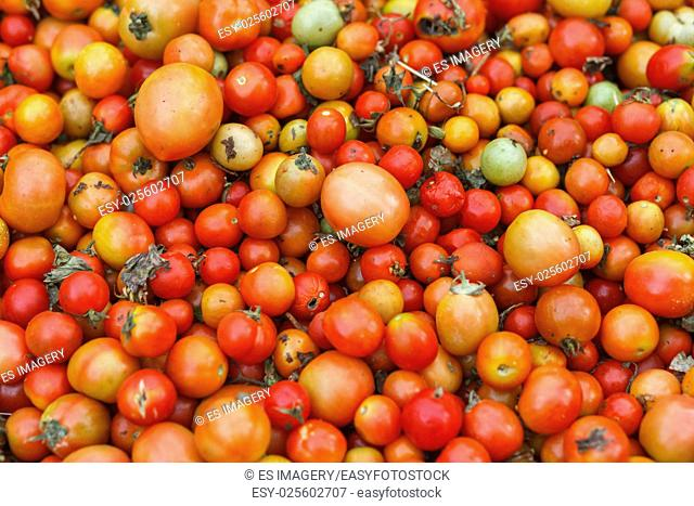 Small cherry tomatoes at a market in Nepal