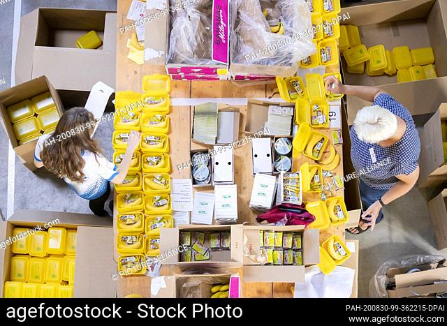 30 August 2020, Berlin: Two participants of a packing action of organic bread boxes at the organic wholesaler Terra Naturkosthandel pack bread boxes