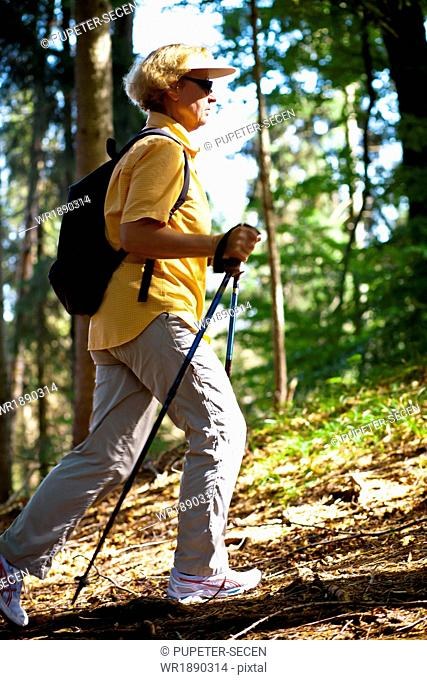 Senior woman Nordic Walking through forest, Osterseen, Germany