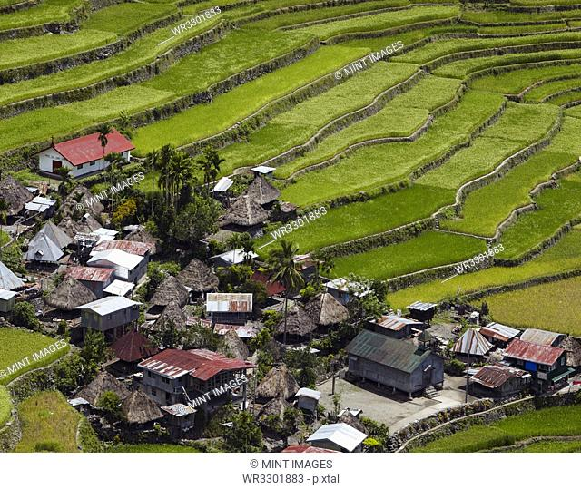 Aerial view of terraced paddy field and village, Banaue, Infugao Province, Philippines
