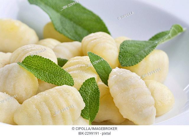 Gnocchi, basil