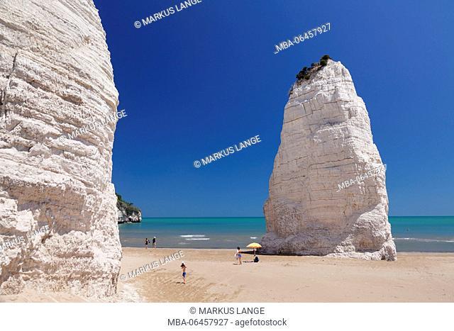 Pizzomunno lime rocks on the beach of Castello, Vieste, Gargano, province of Foggia, Apulia, Italy