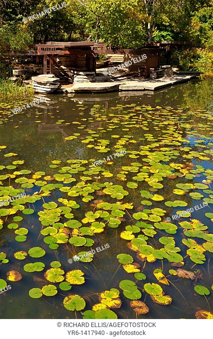 Alfred Caldwell Lily Pool, The Rookery, Lincoln Park Chicago, IL