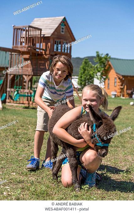 USA, Texas, Children petting miniature donkey on playground