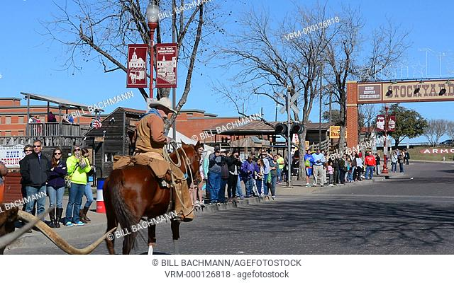 Ft Worth Texas with the famous The Stockyard on Main Street with cowboys heading small herd of longhorn cattle down street with tourists watching for Texas...
