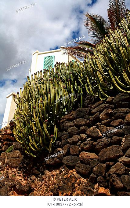 Spain, Canary islands, Lanzarote, Costa Calma