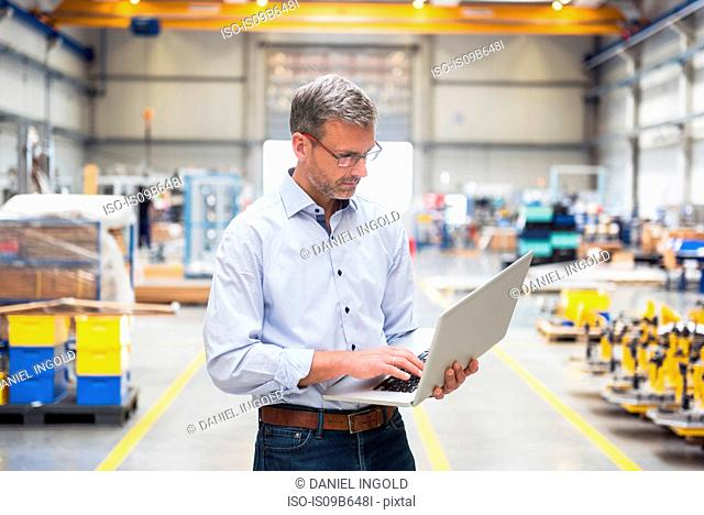 Mature male engineer looking at laptop in engineering factory