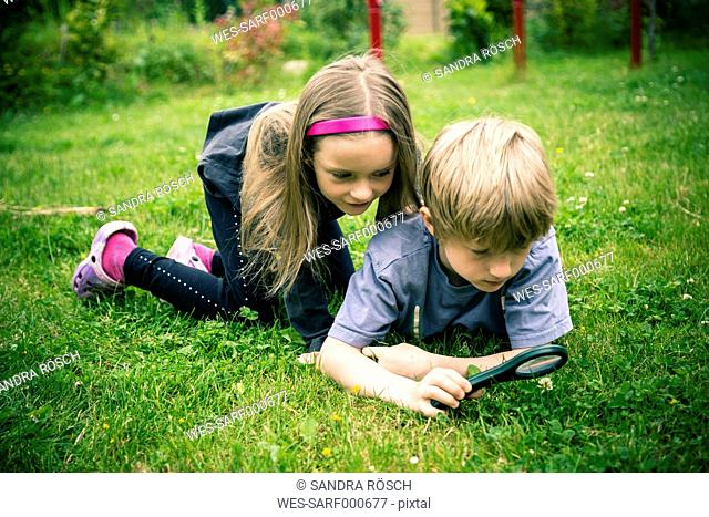 Brother and sister watching flowers with magnifying glass on meadow