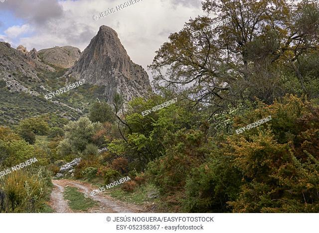 Tajo de Gomer mountain range in Riogordo, Málaga. Spain