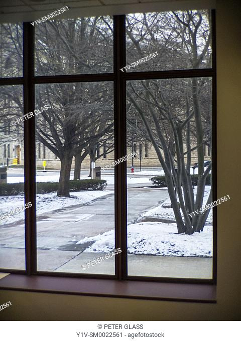 Large interior window showing a building, sidewalk, leafless trees, and snow outside